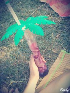 #palm #iceee