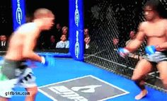 MMA flying Matrix kick | Best Funny Gifs and Animated Gifs Updated Daily - Gif Bin