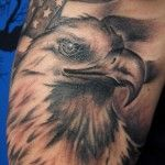 Eagle with American Flag in Background