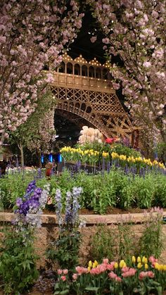 Nice view of the Eiffel Tower. Spring time in Paris, France Paris France, Oh Paris, I Love Paris, Paris Girl, Paris Cafe, Beautiful World, Beautiful Gardens, Beautiful Places, Beautiful Flowers
