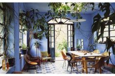 I looove this wall colour - even better with the complementing tones of the wood and plants. heaven