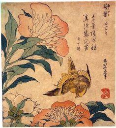 Katsushika Hokuzai (1760-1849)  Canari et petites pivoines (1834), estampe nishike-e, 24,3x17,9 cm
