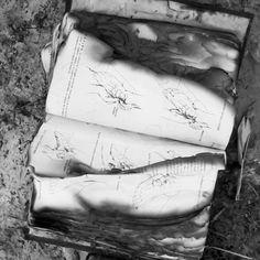 """Old book..."" Vulture, Old Books, Instagram, Antique Books"