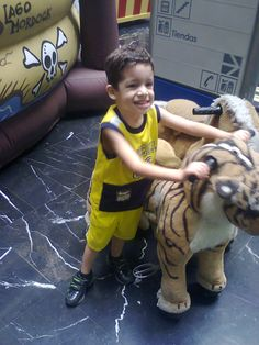 Domando a los tigres