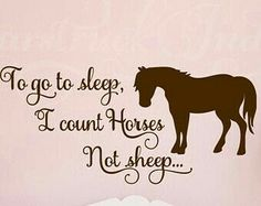 Count horses not sheep sign