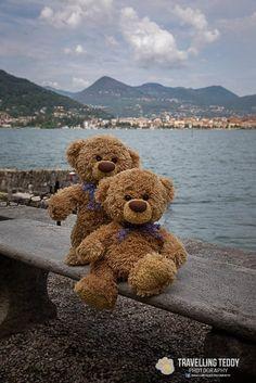 Bild könnte enthalten: Himmel und im Freien Teddy Bear Names, My Teddy Bear, Cute Teddy Bears, Ted Bear, Teddy Bear Pictures, Bear Wallpaper, Tatty Teddy, Bear Doll, Bear Cubs
