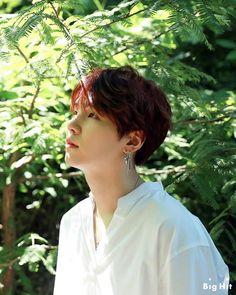 Likes, 17 Comments - bts yoongi ♡ hoseok Bts Suga, Min Yoongi Bts, Bts Bangtan Boy, Namjoon, Jhope, Taemin, Shinee, Daegu, Yoonmin