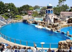 SeaWorld San Diego. I spent a day here as a teenager. NOW, however, I will never visit any waterpark that keeps whales or other sea mammals in captivity for profit and show. It is so WRONG!