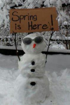 *.spring break snowman.*      t