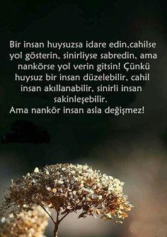 Wisdom Quotes, Book Quotes, Wall Writing, Allah Islam, Beautiful Gif, Nikola Tesla, Albert Einstein, Cool Words, Quotations