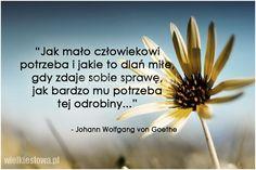 Jak mało człowiekowi potrzeba i jakie to dlań miłe... #Goethe-Johann-Wolfgang, #Człowiek, #Miłość