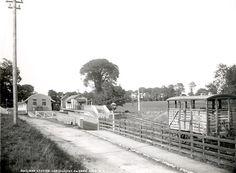 Carrigaline Railway Station Old Photos, Vintage Photos, Cork City, Cork Ireland, Trains, Irish, Outdoor, Old Pictures, Outdoors