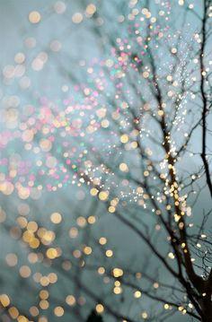 Winter Photography - Fine Art Landscape Photograph, Large Wall Art