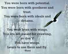 """Have a wonderful Wednesday everyone.......... """"You were born with potential. You were born with goodness and trust. You were born with ideals and dreams. You were born with wings. You are not meant for crawling, so don't! You have wings. Learn to use them and fly."""" ~Rumi"""