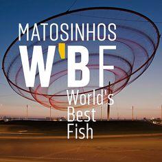 A gastronomia de Matosinhos, cada vez mais apreciada e elogiada a nível nacional e internacional, é considerada um dos principais produtos turísticos do concelho, fazendo parte dos mais variados roteiros e guias de promoção gastronómica de norte a sul do país.