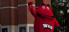 Western Kentucky University mascot in Bowling Green Ky, my home now. It's a friendly, easy going town.