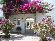 santoriniblog:    Such a pretty scene - Paros, Greece