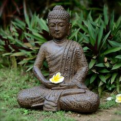 """Made of Volcanic ash with an """"antique"""" finish, this 12"""" statue of Buddha sits in meditation upon a lotus, a symbol of all that is pure and good. The tight-knit spirals adorning Buddha's head actually represent a group of snails who, legend has it, kept his head cool as he sat deeply meditating in the afternoon heat, unaware of his impending heat exhaustion. Suitable for both outdoor and indoor use. #Buddha #Buddhism #meditation #meditate #statue"""