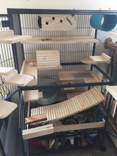 Awesome chinchilla cage setup with lots of wooden ledges and hideouts. I love the long wooden bridge at the bottom of the cage.