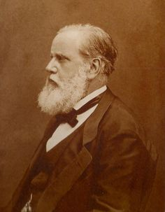 royalty - Her Imperial Majesty Dom Pedro II - Emperor of Brazil - beard bearded