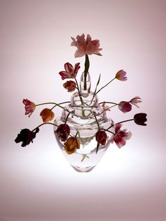 BULBE Ronald van der Hilst Val Saint Lambert Crystal vase valentine flowers design I Love Belgium Blog