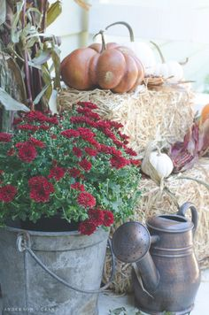 Tips for creating an inviting porch for fall |  www.andersonandgrant.com