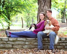 family photography dogs pose (c) Brandi Major Photography