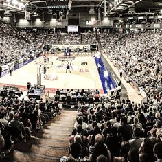 This is what @Adelaide36ers leading a win in a #sellout game look like @TitaniumArena #EventMedicalPlus