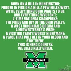 You know, I may have been born and bred WV, but it wasn't until I moved away that I appreciated WV and The Herd. So overlooked.... I love Marshall