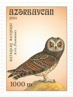 Short-eared Owl stamps - mainly images - gallery format