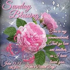 Sunday Blessing, John a Blessed Day! Sunday Greetings, Evening Greetings, Morning Greetings Quotes, Morning Messages, Birthday Greetings, Good Sunday Morning, Good Morning Flowers, Good Morning Quotes, Have A Beautiful Sunday
