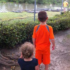 Hunter & Tessa watching the alligators being fed @ Alligator Alley.