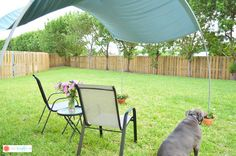 DIY Backyard Sunshade | Hometalk