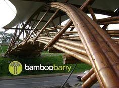 joerg stamm bamboo - Google Search