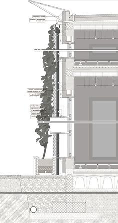 A project for a facade shading system based on seasona plants.