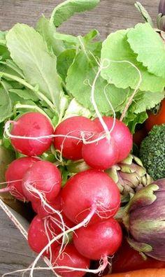 ❦fitoenergética - # vegetables #