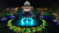 Goodbye to the 2015 Festival of Lights at Lewis Ginter Botanical Gardens.  January 11th...the last night!  We'll see you next year!
