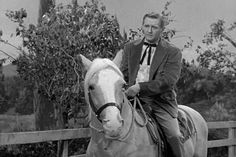 Mister Ed, Don't Laugh at Horses, Mr Ed, Alan Young