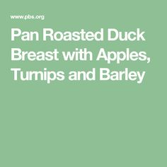 Pan Roasted Duck Breast with Apples, Turnips and Barley