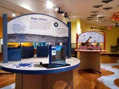 Portfolio of Natural History Exhibits