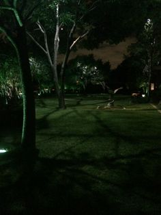 Moonlighting technique installed by #Dallas Landscape Lighting at a home in Dallas, TX. #Moonlighting is the effect achieved when down-lights installed at just the right height on tree trunk or branches cast a #moonlit glow on to the lawn below, complete with dancing shadows of leaves and mesmerizing patterns of branches.  FREE ESTIMATES 214-202-7474 http://www.dallaslandscapelighting.net/contact/