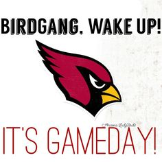 Arizona Cardinals Gameday! Arizona LadyBirds #BirdGang #NFLfemale @nfl 2015