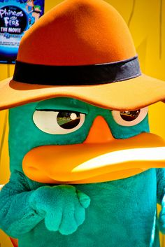 Agent P aka Perry the Platypus, via Flickr.