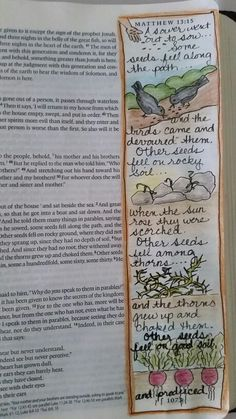 Matthew 13 From Dianne Gottron's Bible.