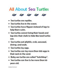 Sea turtle preschool fact sheet printable and other sea turtle craft and activity ideas