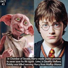 Harry Potter Ilvermorny House Quiz Pottermore, also hat Harry Potter Lockhart besetzt als . Harry Potter Film, Harry Potter Jokes, Harry Potter Characters, Harry Potter Fandom, Harry Potter Universal, Harry Potter World, Harry Potter Pictures, Potter Facts, Humor