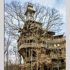 Tree house in Tennessee by Horace Burgess. Photo by Tom Whetton.