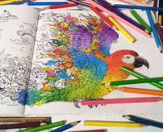I got this really cool adults coloring book Animorphia for christmas and I just can't stop co...