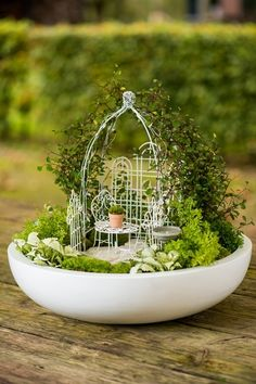Adorable-Mini-Tea-Gardens Apparently, Teacup Gardens Are A Thing And Here Are 23 Adorable Examples Mini Fairy Garden, Fairy Garden Houses, Fairy Garden Plants, Dish Garden, Deco Floral, Miniature Fairy Gardens, Indoor Fairy Gardens, Succulents Garden, Minis