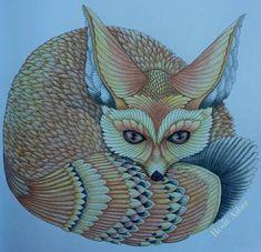 101 Best Curious Creatures Images On Pinterest